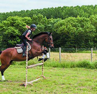 Équitation à Saint Gervais